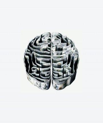brain segment made from dollar bills