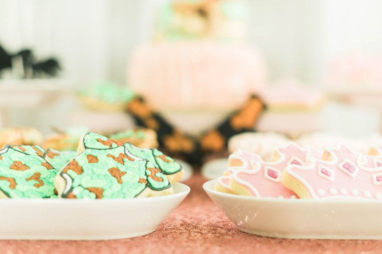 a lively affair, sarah vanderford photography, gender reveal hampton roads