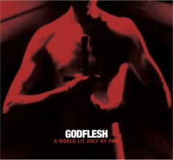 godflesh album