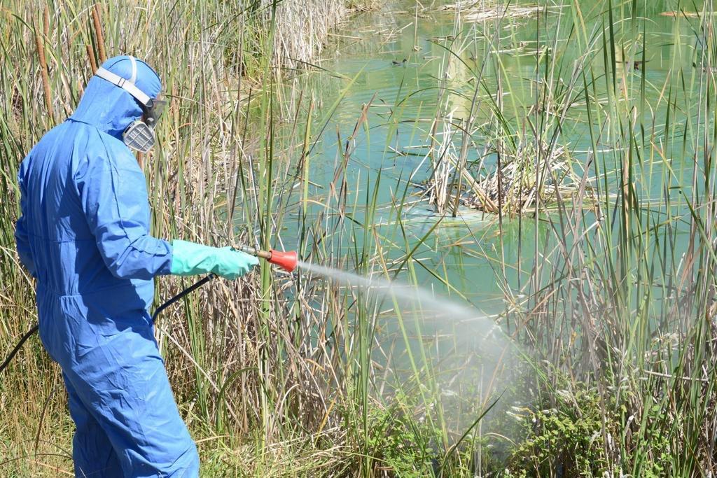 Un operario fumiga las lagunas del Parque del Olivar del Zaudín.