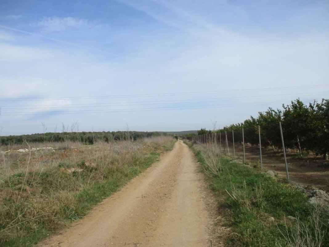 Etapa 2 de la ruta de la Vía de la Plata que une Santiponce con Castilblanco de los Arroyos