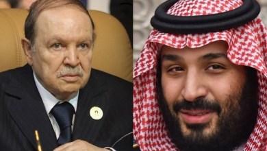 Photo of بدعوة من بوتفليقة: هل تحرك زيارة ولي العهد الاستثمارات السعودية بالجزائر؟