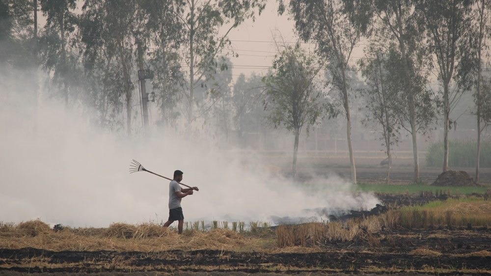 farmer burning crops