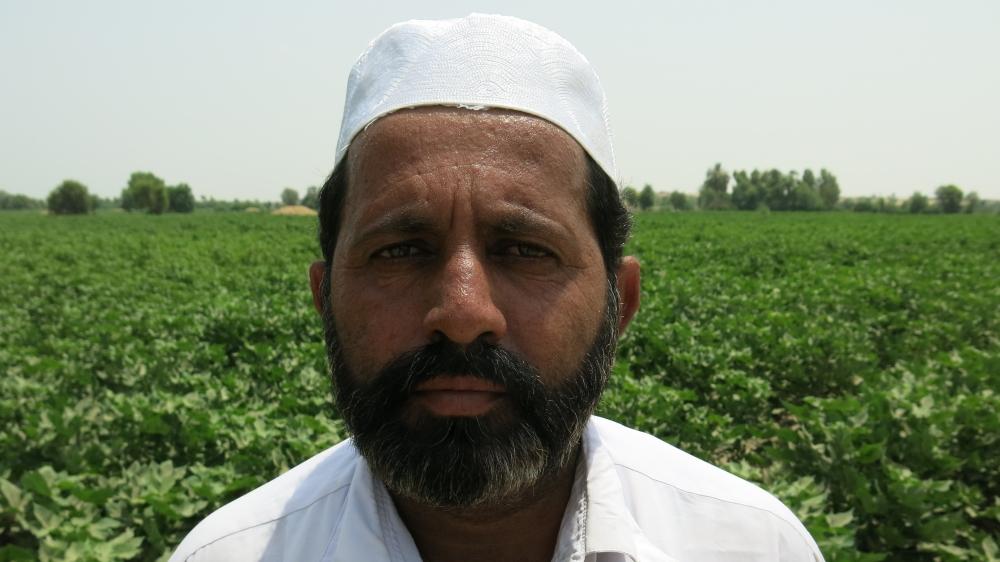 Pakistan locusts, farmers affected