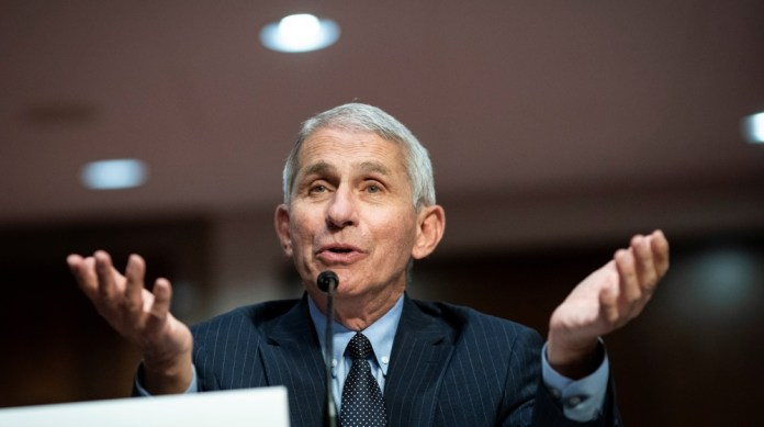Anthony Fauci, director of the National Institute of Allergy and Infectious Diseases, speaks during a Senate Health, Education, Labor and Pensions Committee hearing on efforts to get back to work and