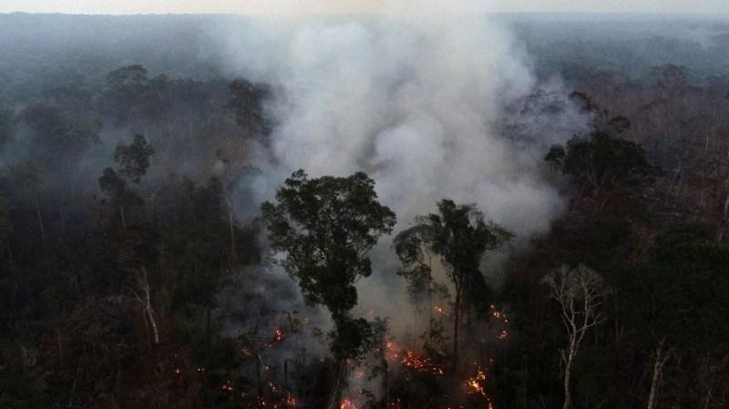 Brazil Amazon rainforest wildfires
