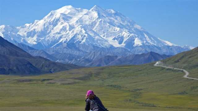 Image result for Denali mountain