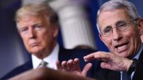 Who is Dr Anthony Fauci, the US's trusted voice on coronavirus ...