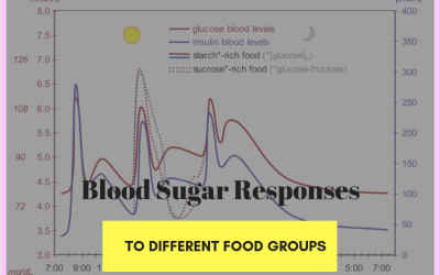Blood Sugar and Weight Loss- Part 2 -impact on blood sugar with different kinds of foods