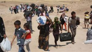 تهجير السنة في العراق