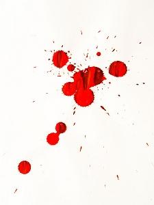 Blood Spatter Expert