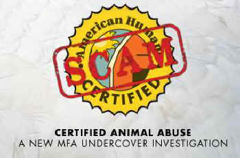 What Does That American Humane Certified Label On Your