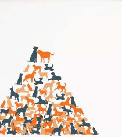 WorldSpayNeuter-Day-_pyramids-graphic