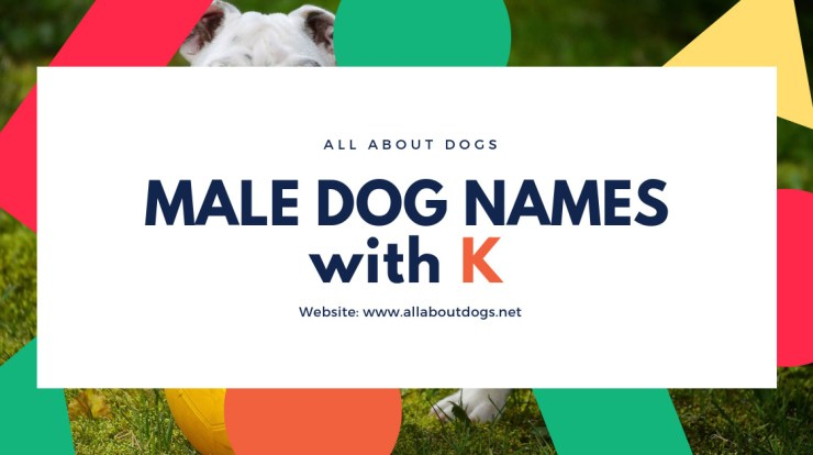 Male Dog Names With K