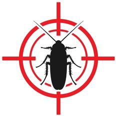fotolia_eliminate-bug