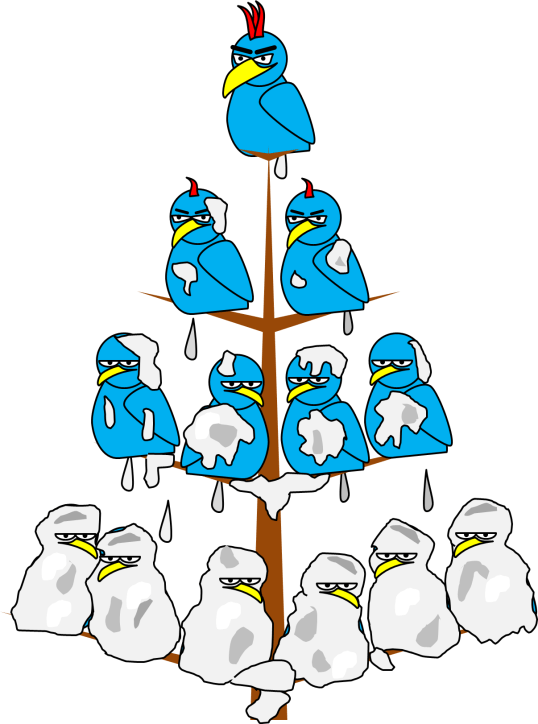 Bird Shit Policy Deployment