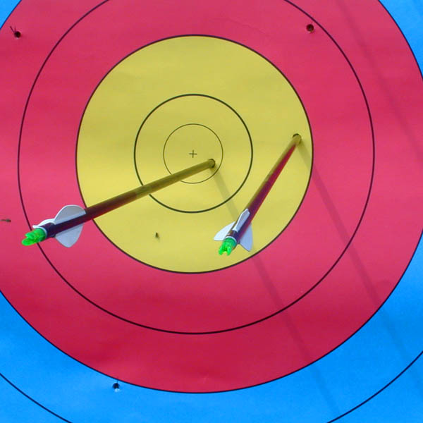 Archery Target with Arrows