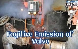 fugitive emission in valve