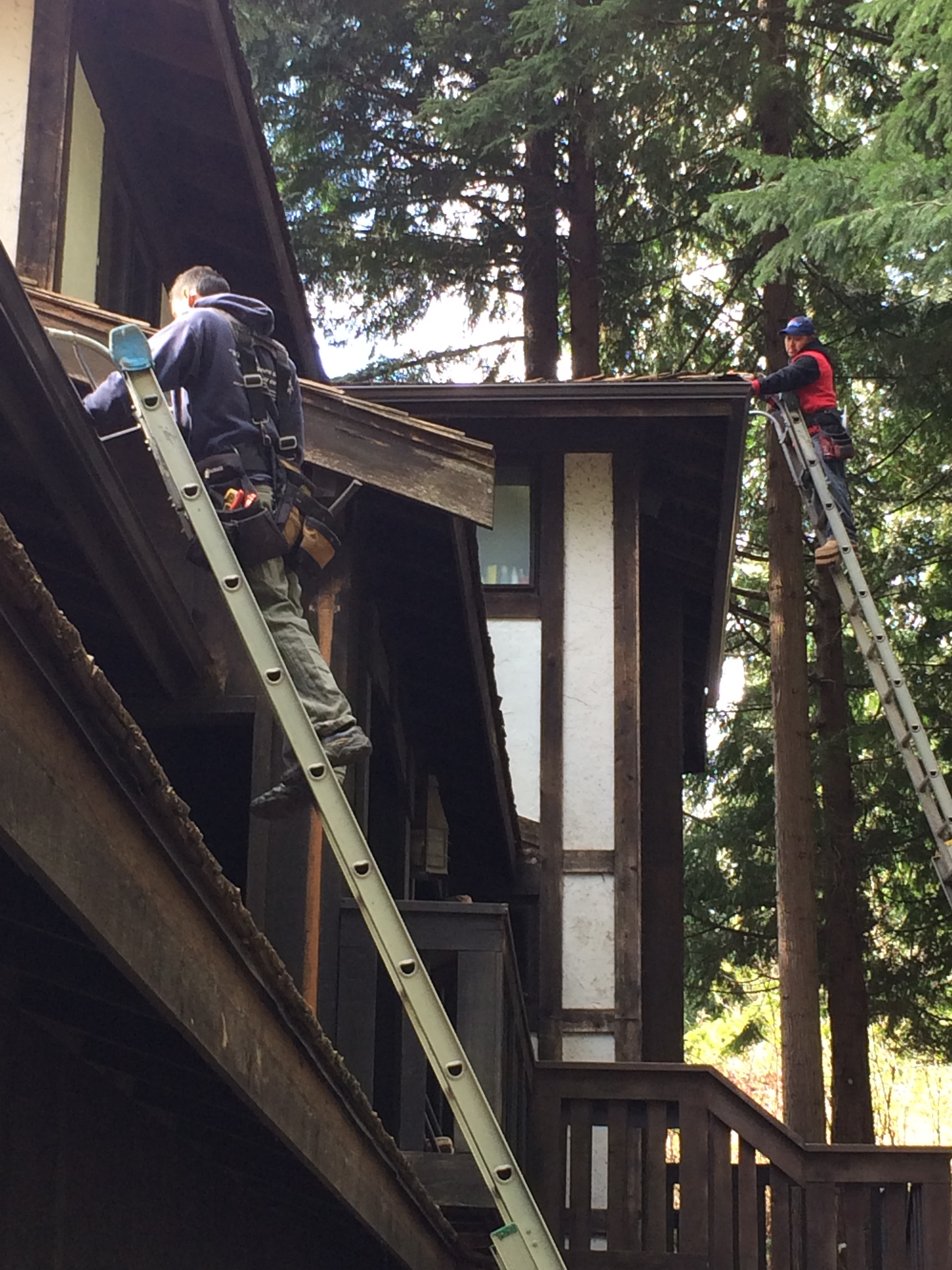Skilled crew replacing gutters in Bellevue, All About Gutters