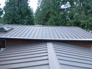 Renton, WA Gutter Cleaning