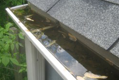 Cleaning Gutters in Renton
