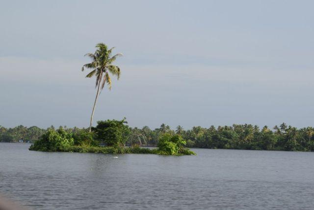 Green, glassy backwaters of Kerala