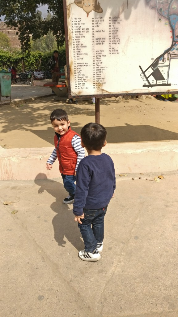 Children enjoying the zoo