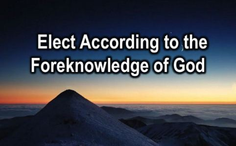 Elect according to the fireknowledge of God