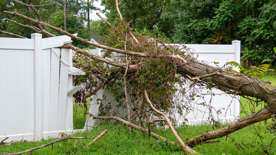 Does Homeowners Insurance Cover Fence Damage?