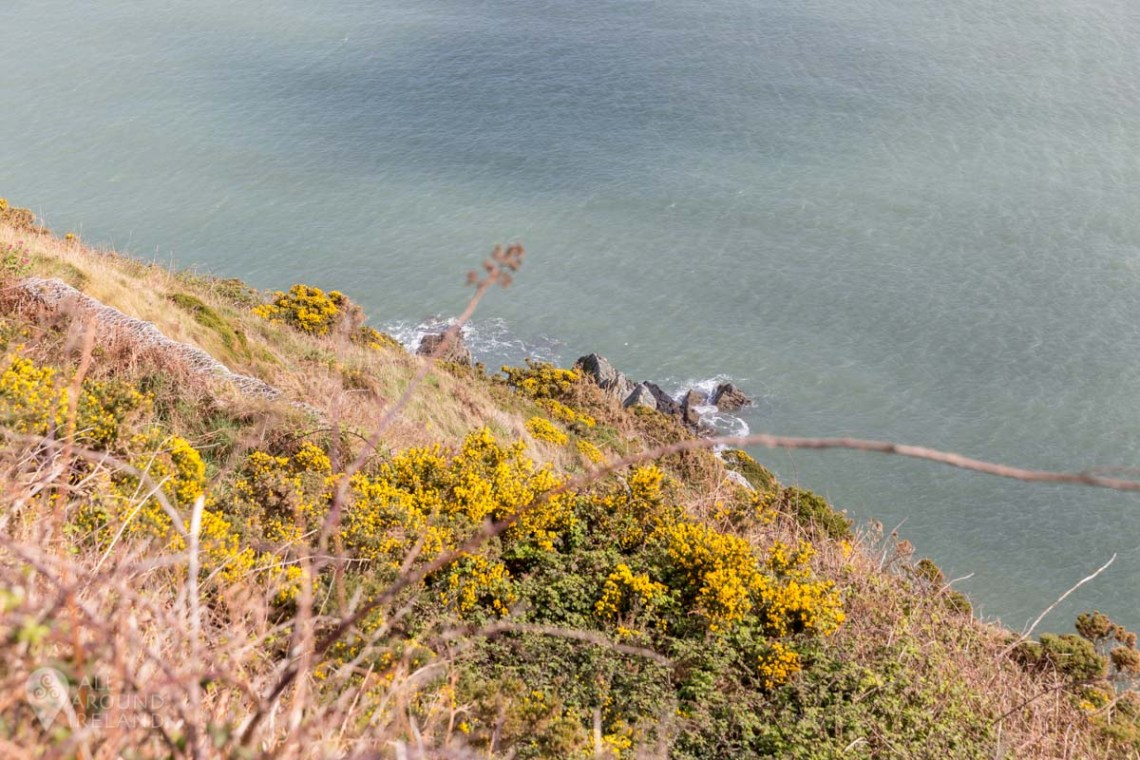 Stunning coastal scenery along the Bray to Greystones cliff walk