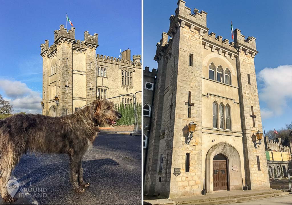 Oscar the resident Irish Wolfhound and the Castle entrance