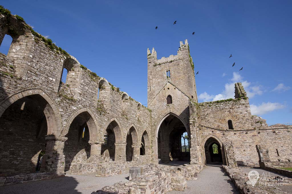 Birds flying over the tower at Jerpoint Abbey in Kilkenny, Ireland