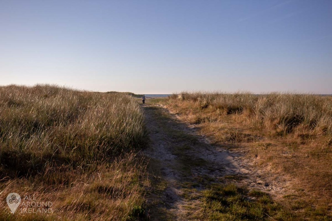 Following the trail from Curracloe Beach to Raven Wood.
