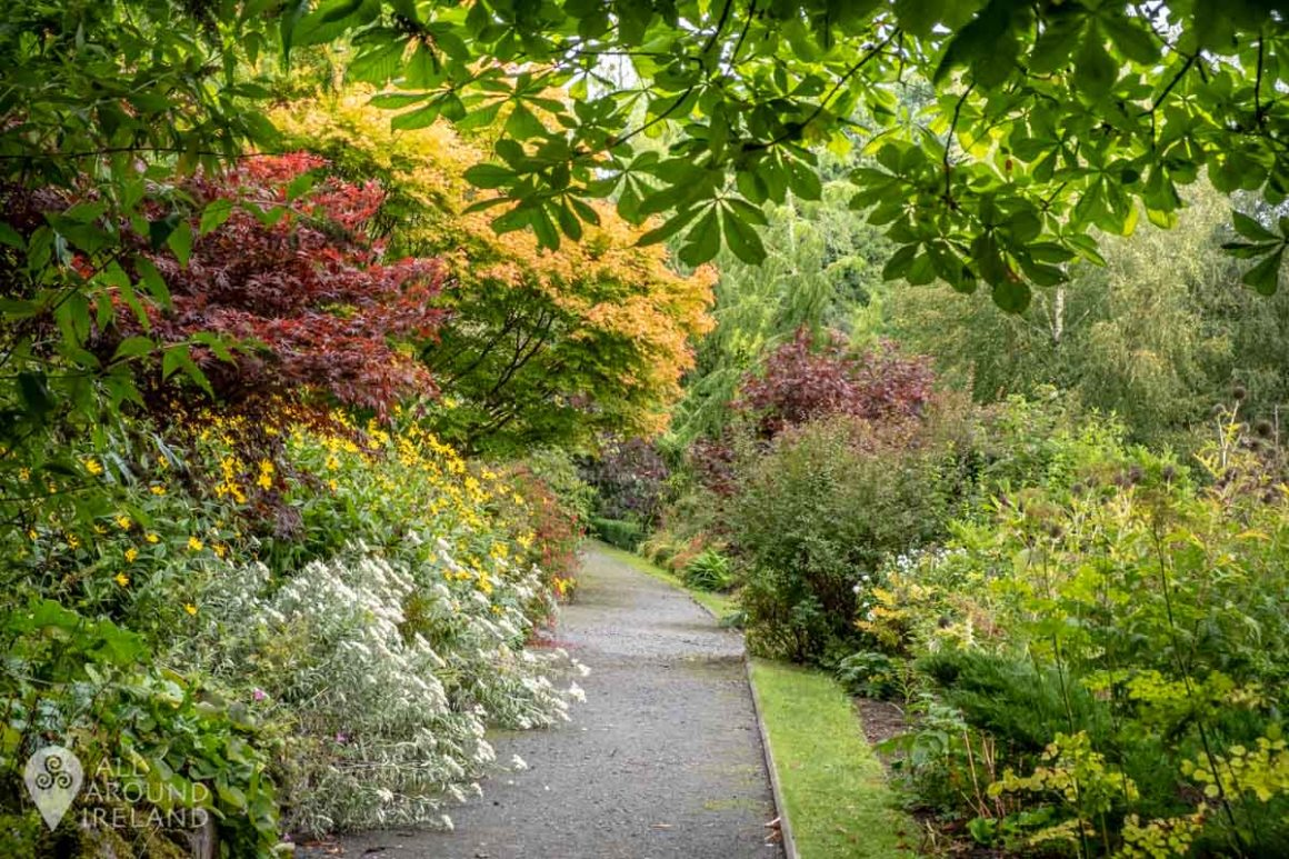 Beautiful colours in the Walled Garden at Belvedere House and Estate.
