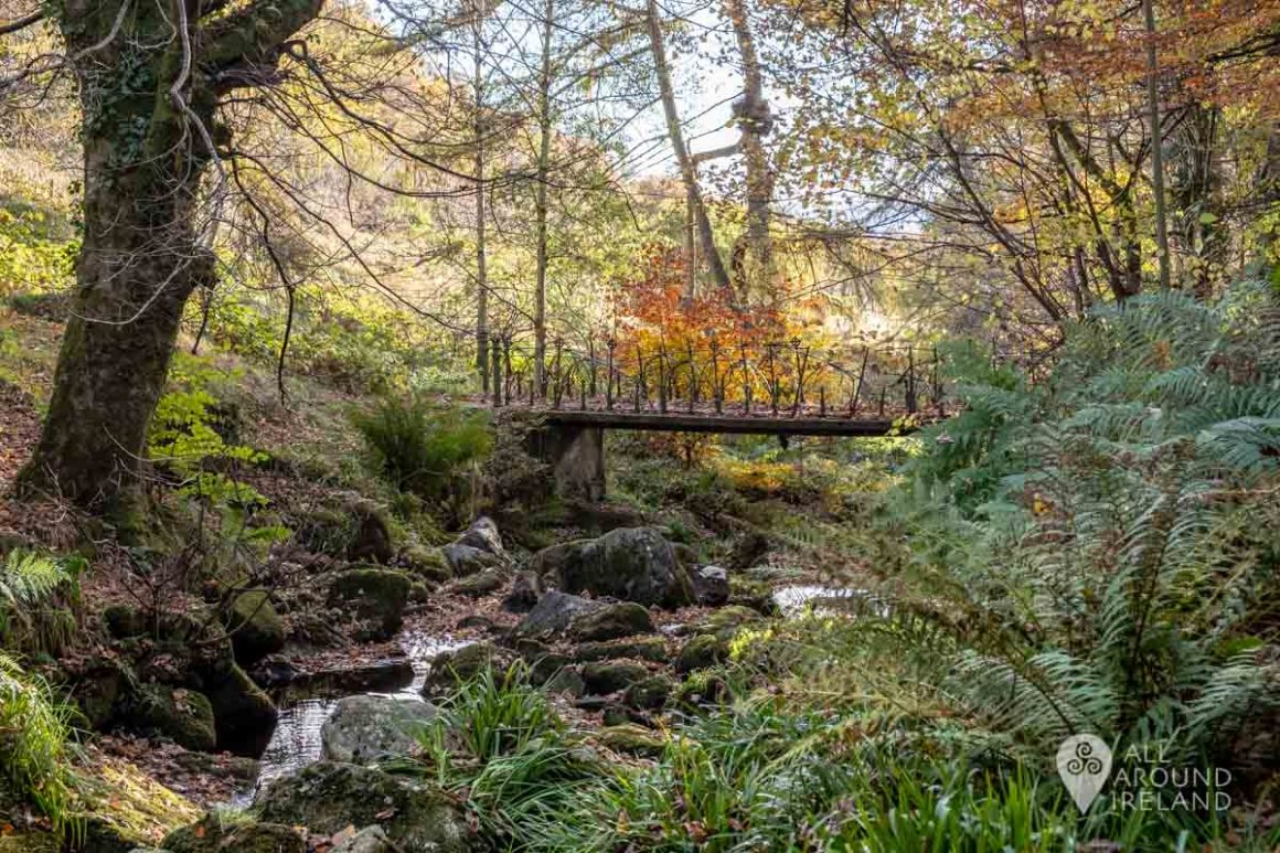 Bridge over the Glencree River, close to the grotto.