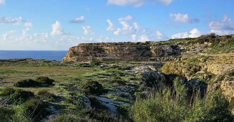 Ein grün bewachsenes Feld oberhalb der steilen Klippen der Insel Gozo in Malta.
