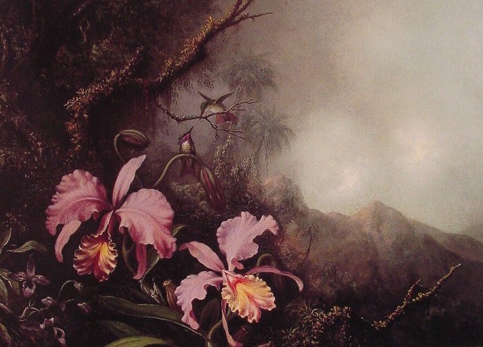 Paintings Reproductions Heade, Martin Johnson Two Orchids in a Mountain Landscape, c.1870