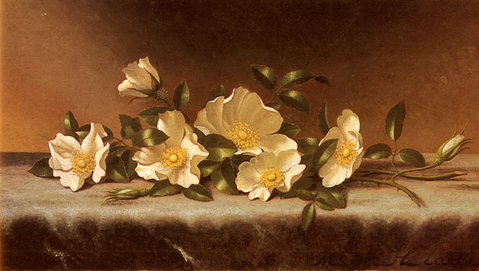 Paintings Reproductions Heade, Martin Johnson Cherokee Roses On A Light Gray Cloth