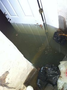 Everything You Need to Know About Basement Water Damage