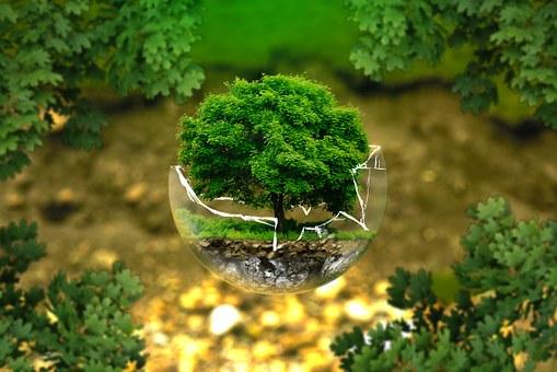 environmental-health-3