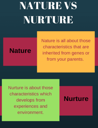Essay about nature vs nurture