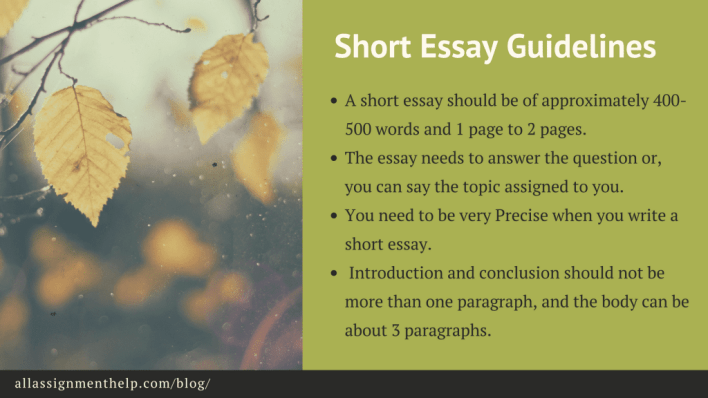short-essay-guidelines