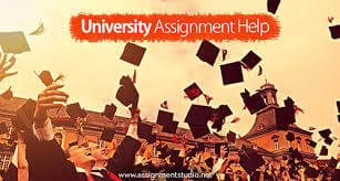 RMIT University assignmnet help