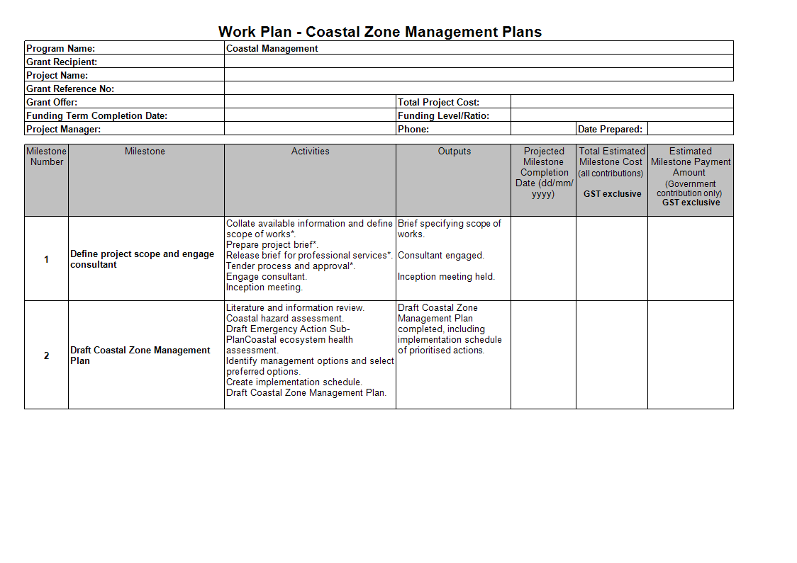 Professional Work Plan Templates At