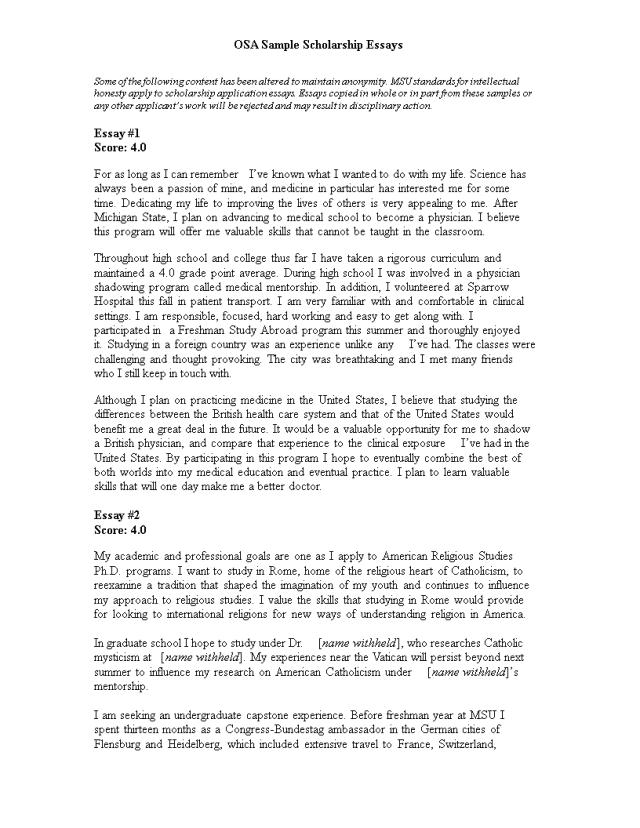 Scholarship Essay example  Templates at allbusinesstemplates.com