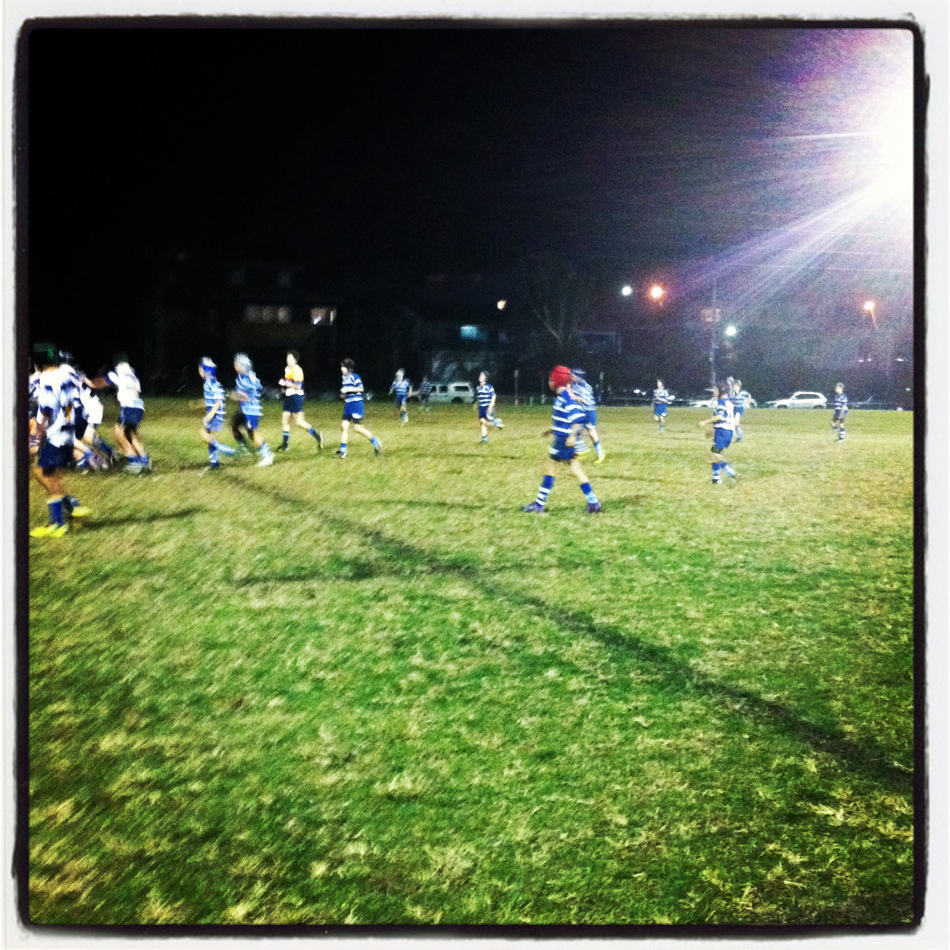 Newport Rugby Club Sydney Rugby Parents Rugby Union Kids Rugby