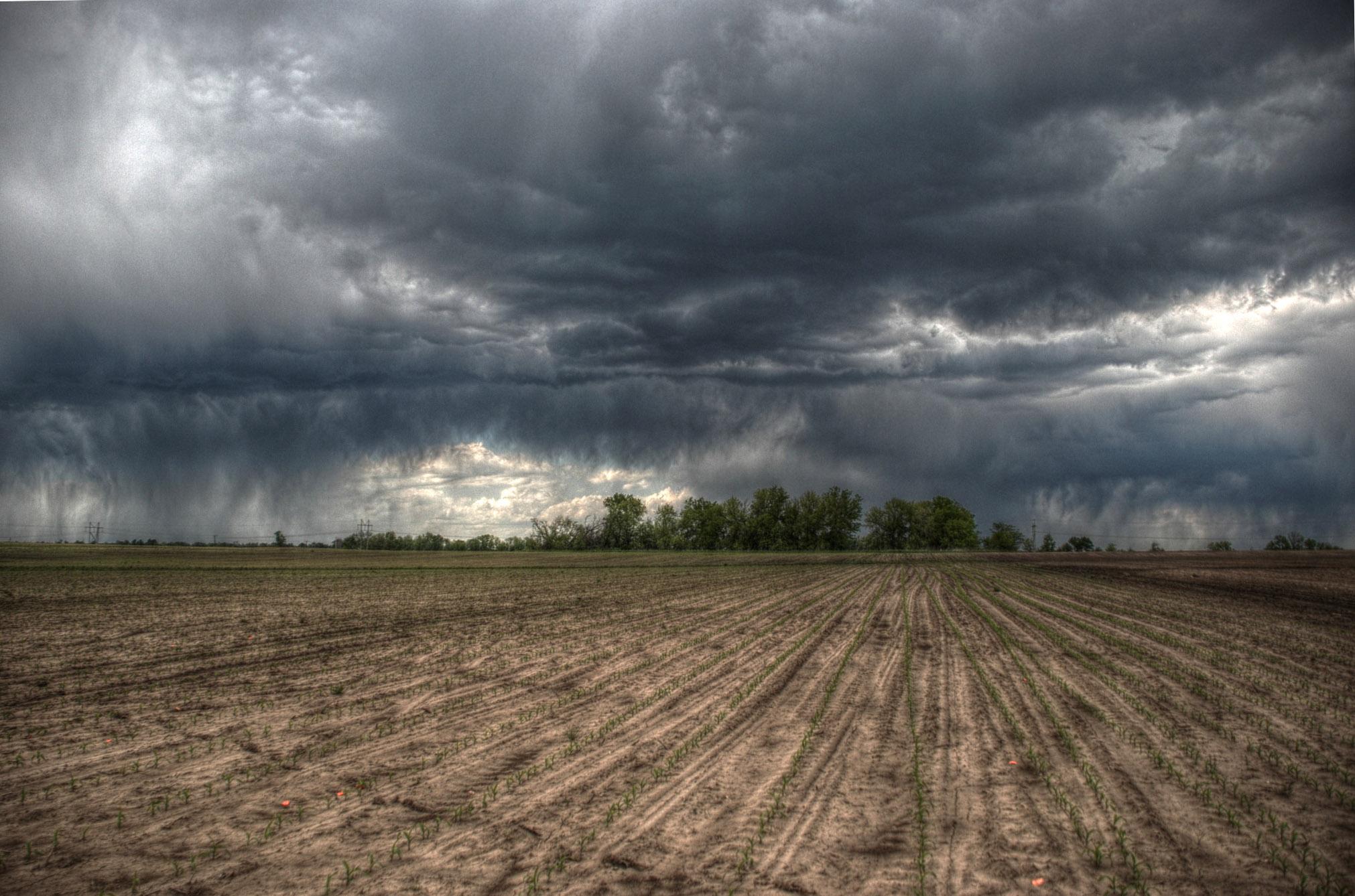 Resultado de imagen de Lauren Rauniker Thunderstorm