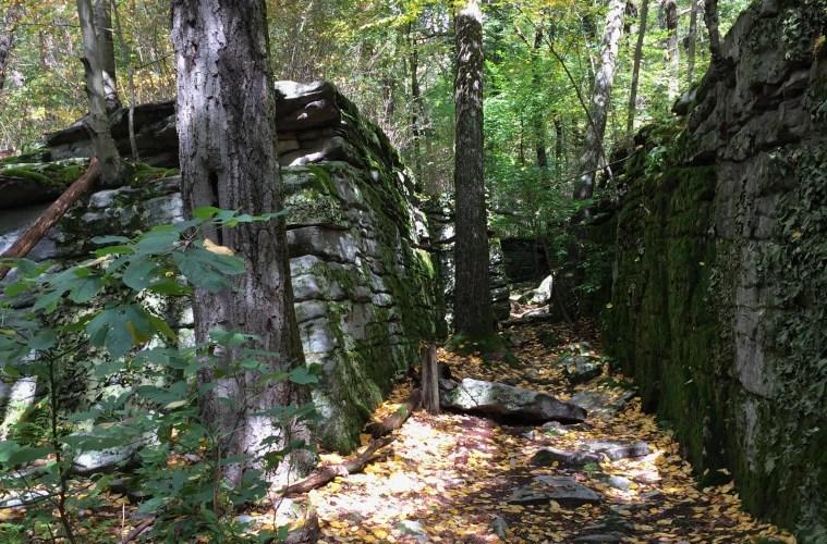 Laurel Highlands Hiking Trail. Photo: Reid R. Frazier