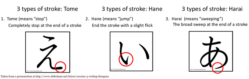 The three types of strokes for japanese kana. Tome, Hane, Harai.