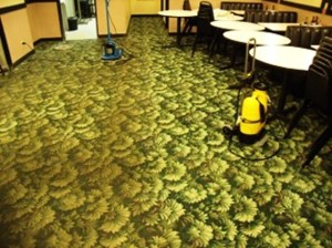 Green Carpet Cleaning Service Minneapolis